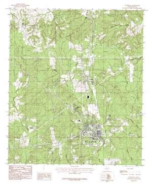 Woodville topo map