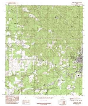Jasper West topo map