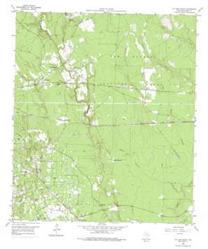 Cut And Shoot topo map