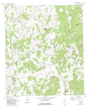 Hicks topo map