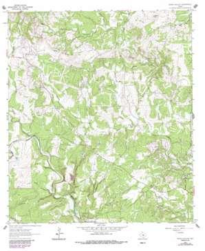 Rough Hollow topo map