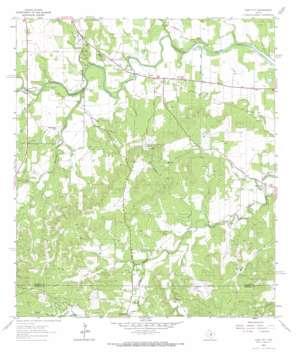 Cain City topo map