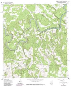 Hammetts Crossing topo map