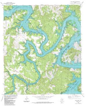 Pace Bend topo map