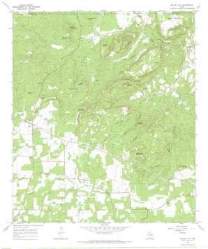 Willow City topo map
