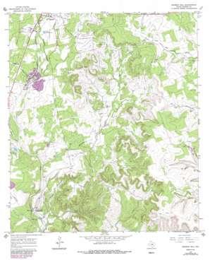 Mormon Mill topo map