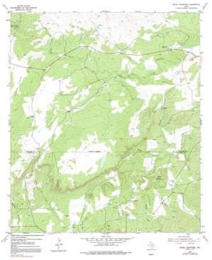 Magill Mountain topo map