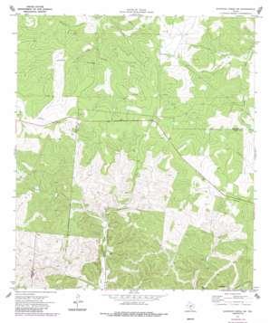 Earwood Creek Sw topo map
