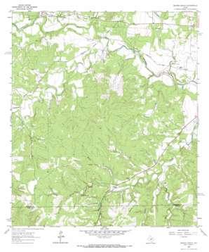 Morris Ranch topo map