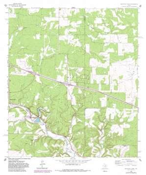 Mountain Home topo map