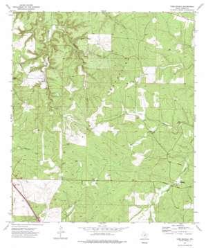 Tobe Branch topo map