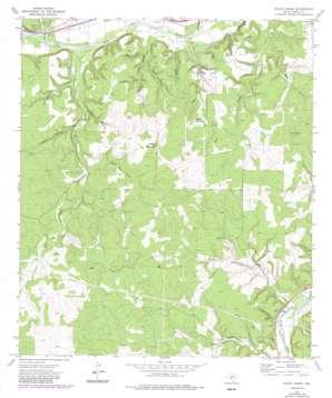 Bailey Creek topo map