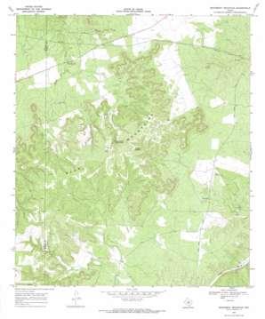 Monument Mountain topo map