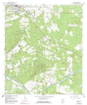 Mason topo map