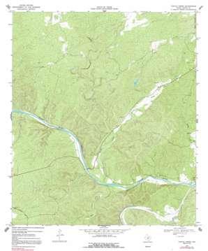 Turtle Creek topo map