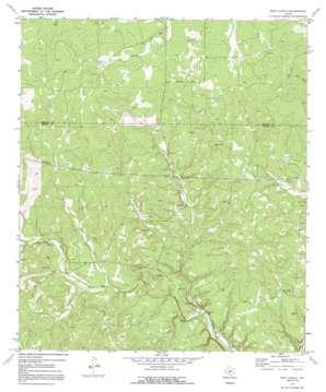 Rust Ranch topo map