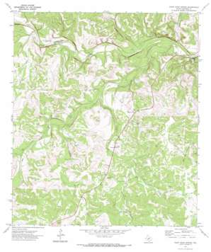 Paint Rock Spring topo map