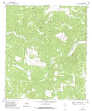 Ray Lake topo map