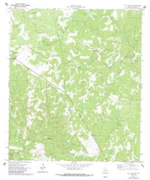 Ray Lake Nw topo map