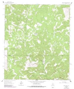 Bundy Ranch topo map