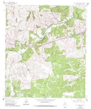 Fort Terrett Ranch topo map