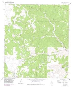 Steen Lake topo map