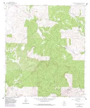 Brokeleg Mountain topo map
