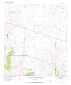 Oglesby Ranch topo map