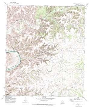 Everett Canyon topo map