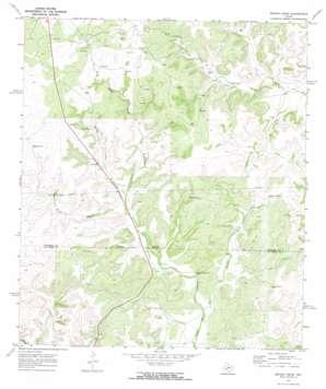 Brushy Draw topo map