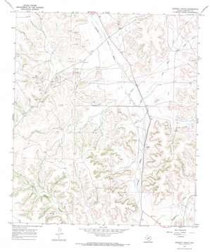 Baggett Ranch topo map