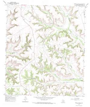 Burnt Canyon topo map