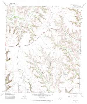 Bachelor Hill topo map