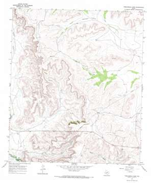 Twelvemile Camp topo map