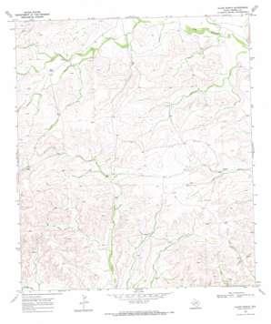 Allen Ranch topo map