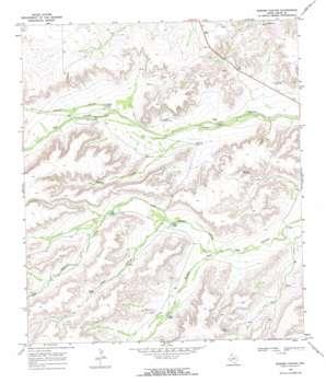 Busher Canyon topo map