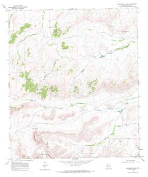 Reininger Draw topo map