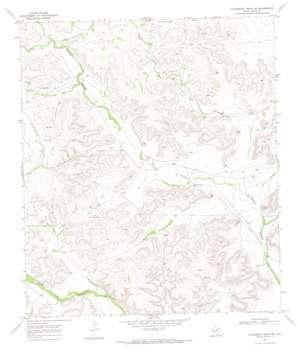 Hackberry Draw Ne topo map