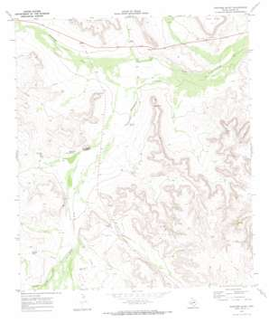 Panther Bluff topo map