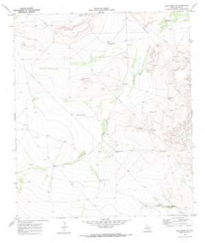 East Mesa Sw topo map