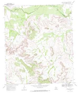 Indian Mesa Ne topo map