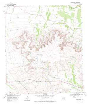 Indian Mesa topo map