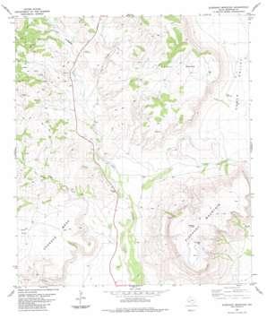 Elephant Mountain topo map