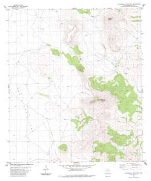 Cathedral Mountain topo map