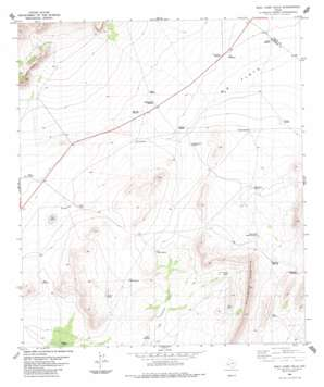 Wolf Camp Hills topo map