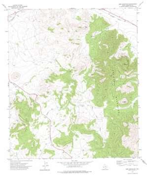 Bird Mountain USGS topographic map 30103c5