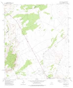 Alpine North topo map