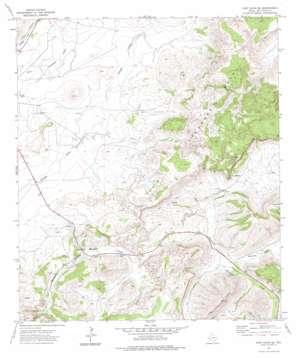 Fort Davis Se topo map