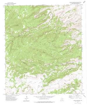Casket Mountain topo map