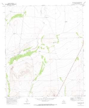 Belding Sw topo map